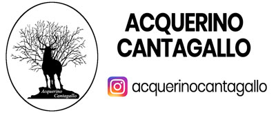 Acquerino Cantagallo Instagram