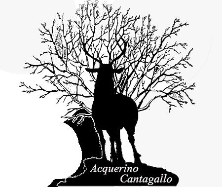Associazione Acquerino Cantagallo logo cervo