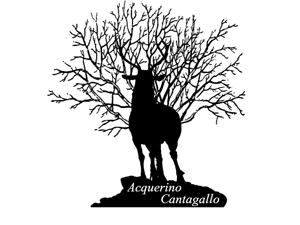 Acquerino Cantagallo logo cervo