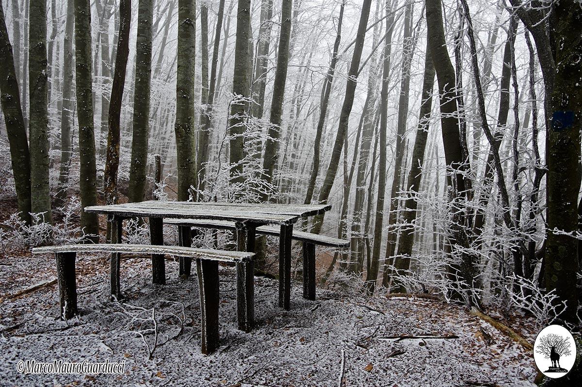 Tavolo e panchine con neve