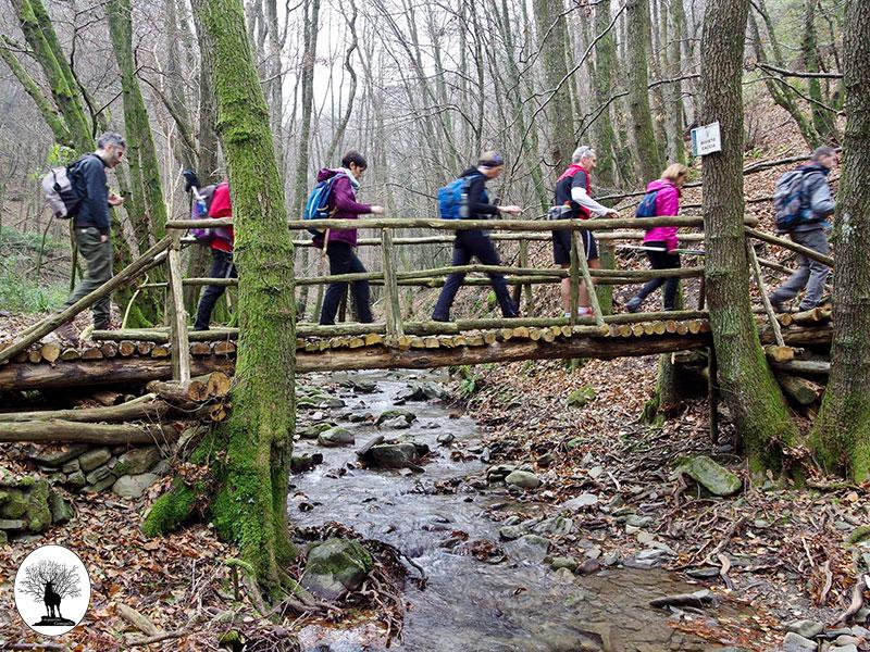 Proporre provvedimenti che incentivino la diffusione dell'escursionismo