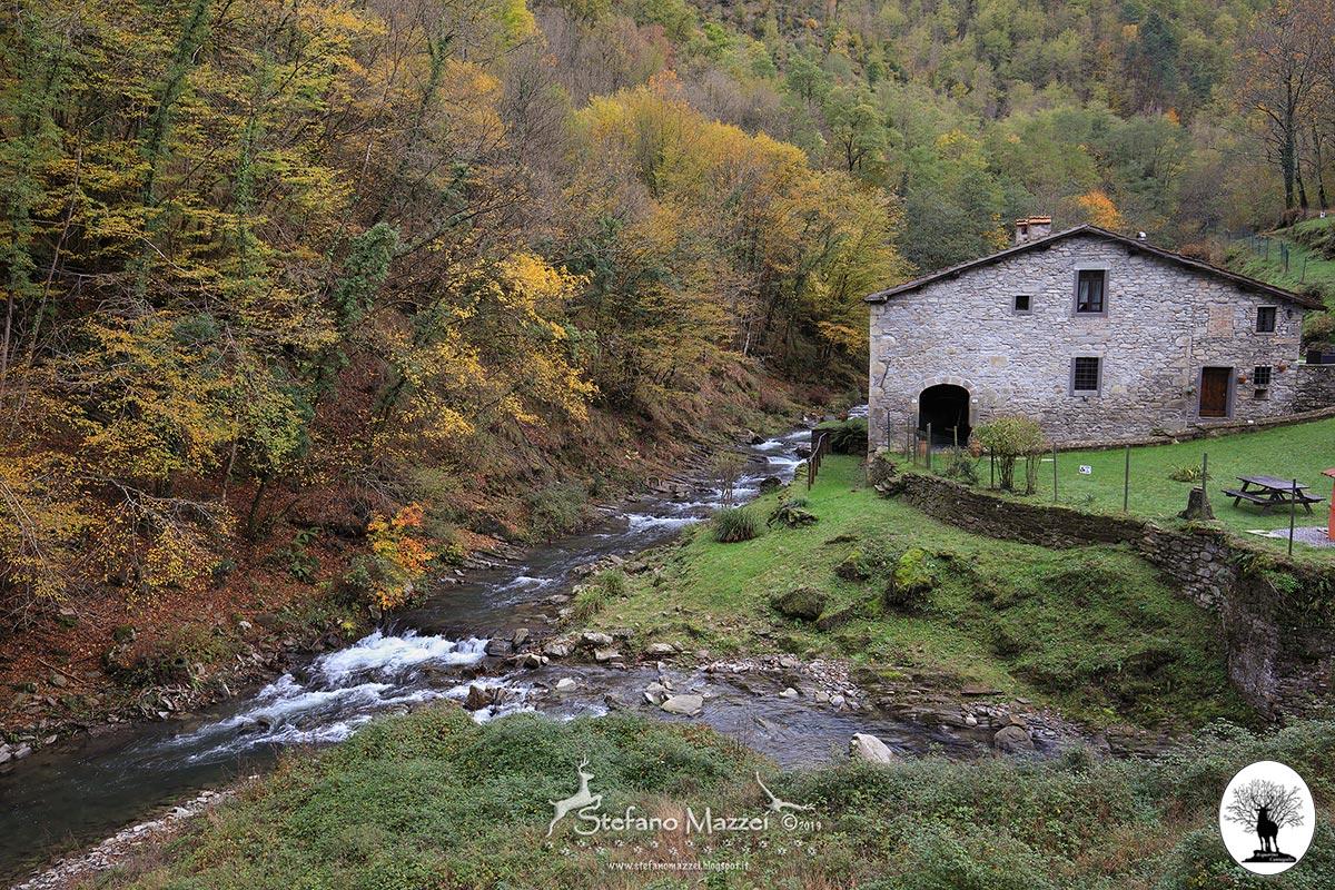 Fiume con cascina nella Riserva Naturale Acquerino Cantagallo