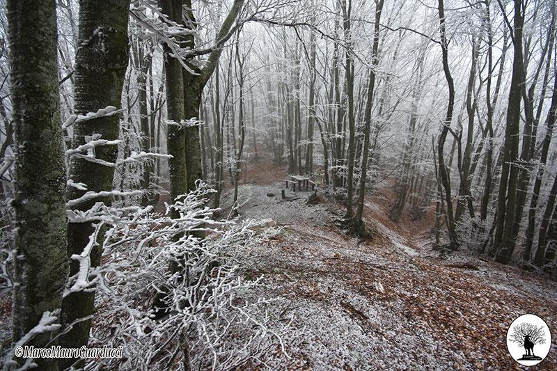 Foce di Cerbiancana in inverno con neve
