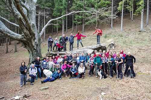 Gruppo persone Fuori dal web Faggione nella Riserva Naturale Acquerino Cantagallo