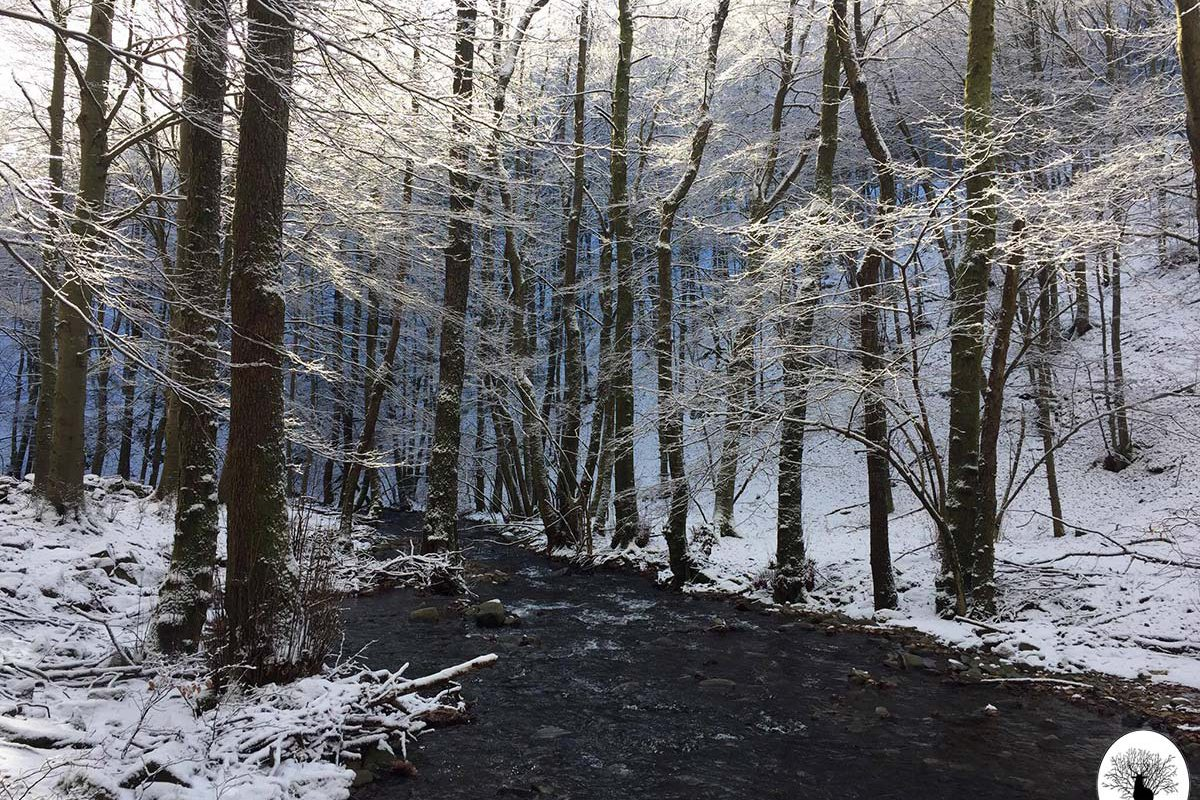 Limentra con neve in inverno