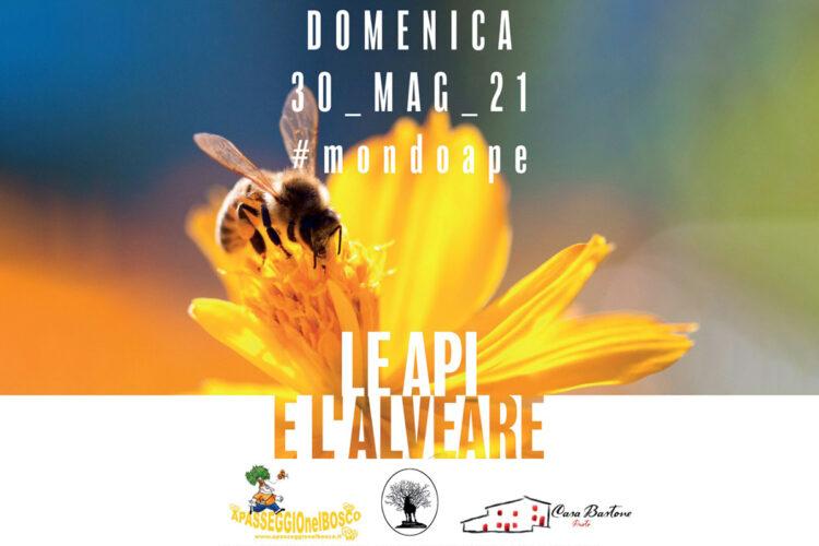 Mondoape – Le api e l'alveare