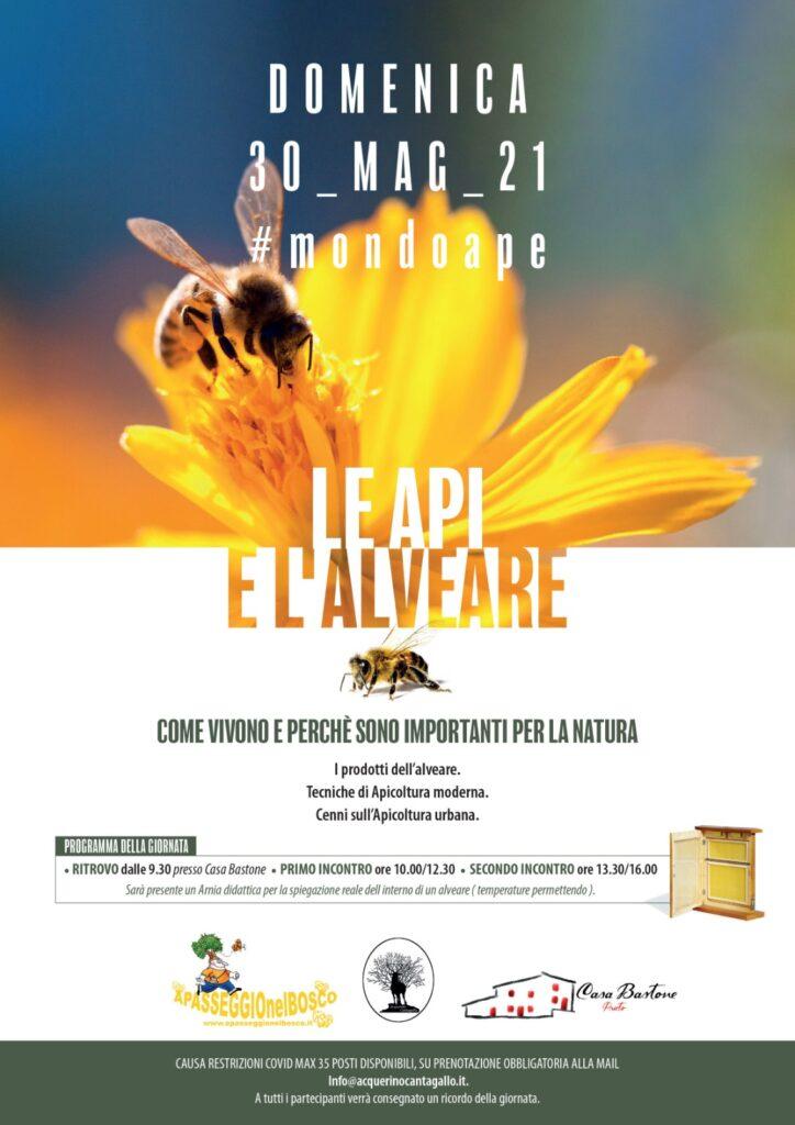 Mondoape le api e l'alveare volantino evento