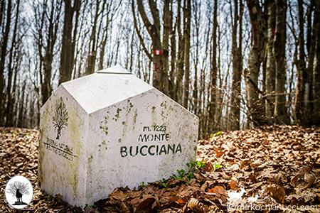 Segnale Monte Bucciana nella Riserva Naturale Acquerino Cantagallo
