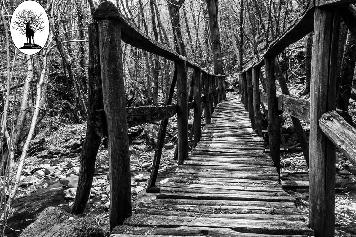 Ponticino di legno in bianco e nero