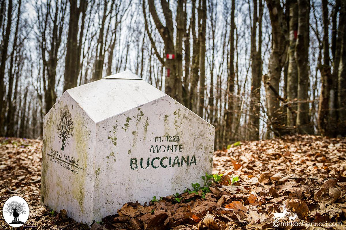 Segnale pietra Monte Bucciana